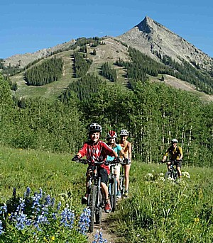Crested butte mountain resort in colorado rockies offers for Cabins near crested butte co