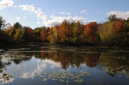 The Berkshires, Massachusetts. Accuweather is predicting an exceptional fall foliage this season © 2014 Karen Rubin/news-photos-features.com